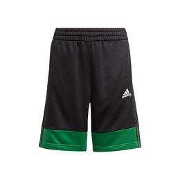 A.R. 3S Shorts